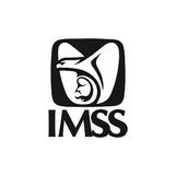 IMSS Instituto Mexicano del Seguro Social