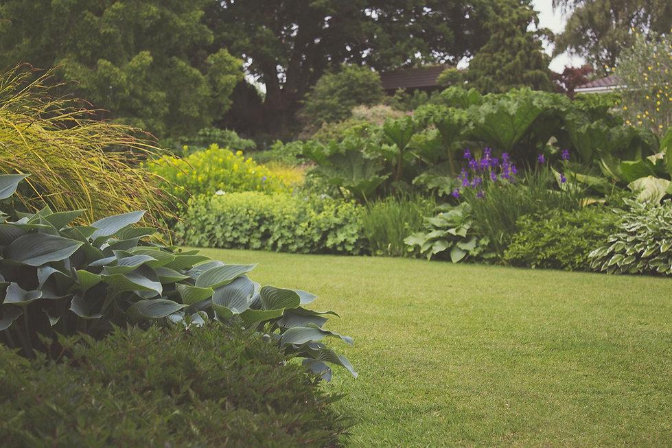 Garden_edited.jpg