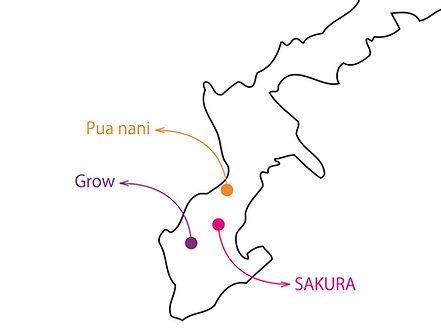 沖縄,シェアハウス,ソーシャライズハウス,地図,マップ