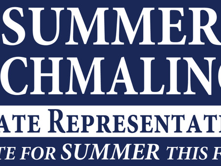 Summer Schmaling is on The Ballot for State Representative