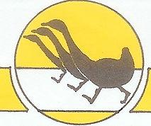 Western Australian Race Walking Club Logo Race walking Perth