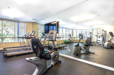 The Enclave - Gym.jpg