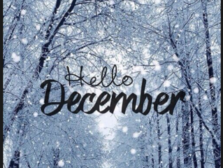 Director's Newsletter #15 - 18, December 2