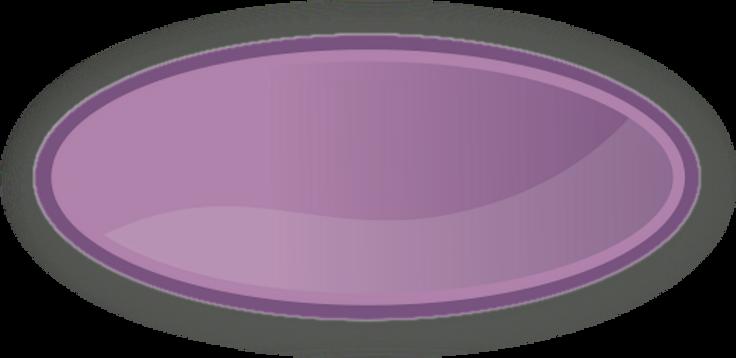 color_label_oval_purple_T.png