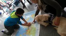 Unterricht mit Hund