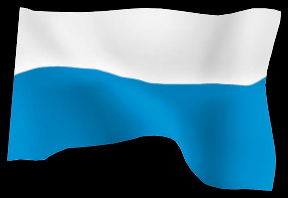 Flaga Maryjna