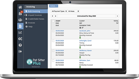Laptop showing bulk invoicing for pet sitting software in Pet Sitter Plus
