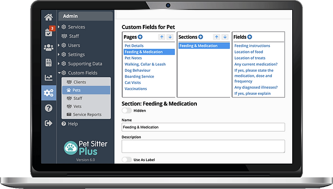 computer showing marketing reports tools for dog walker software in Pet Sitter Plus