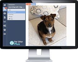 Computer showing client management for pet sitting software from Pet Sitter Plus