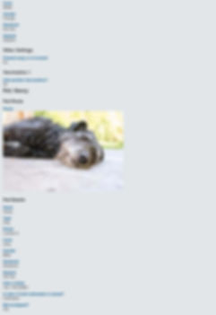 Print Client Summary pdf2