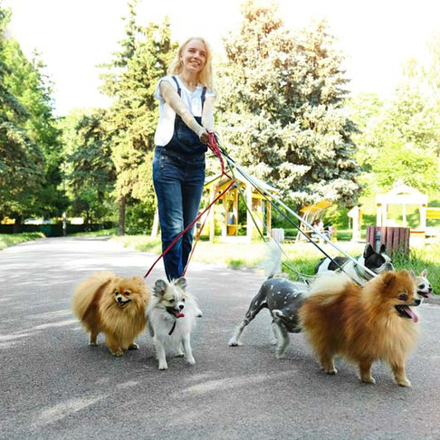 To Grow Your Pet Sitting Business, You Must Hire