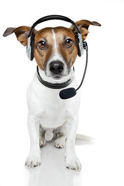 PSP Help Dog