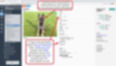 tutorialv6-add-petdata1.jpg