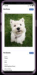 Mobile showing Pet Sitter Plus dog walking software