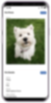 The mobile pet profile on dog day care software from Pet Sitter Plus
