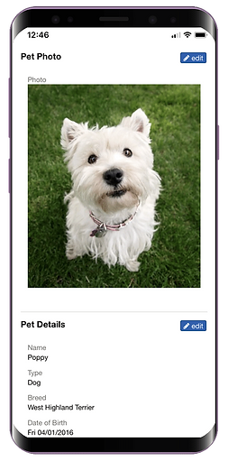 Mobile showing Pet Sitter Plus dog walking software