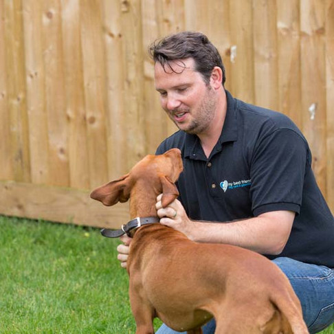 Meet Jon Roff, owner of My Best Friend Dog Care