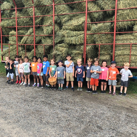 Barnyard Buddies Week 3 Day 3