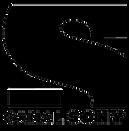 113-1132876_canal-sony-logo-png-transpar