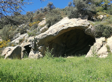 I sugheri del Feudo Manna - Escursione Archeo-naturalistica