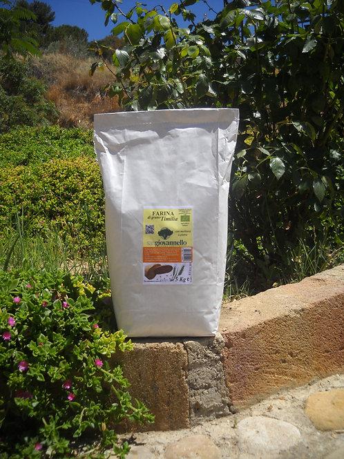 Farina di  Timilia  Bio conf. 5 Kg