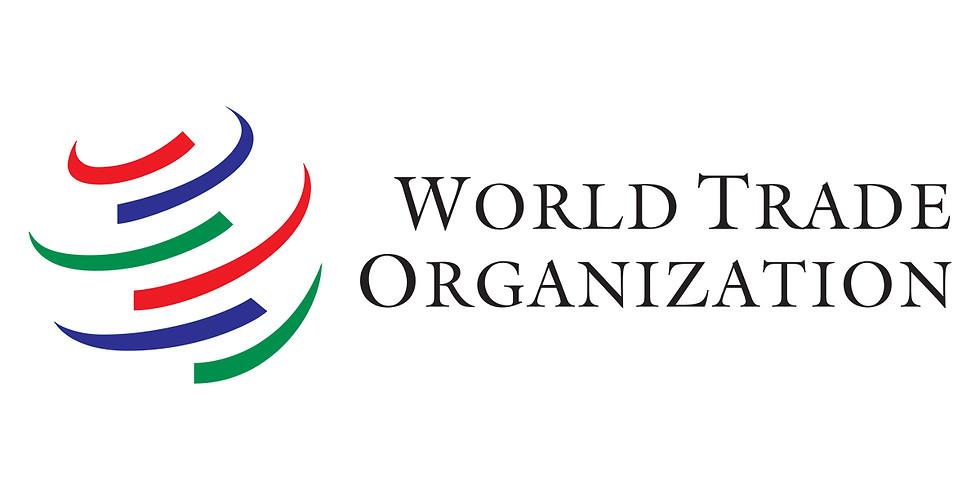 Student Visit to WTO (World Trade Organization)