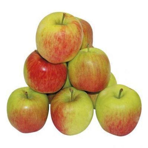Delbar appelen