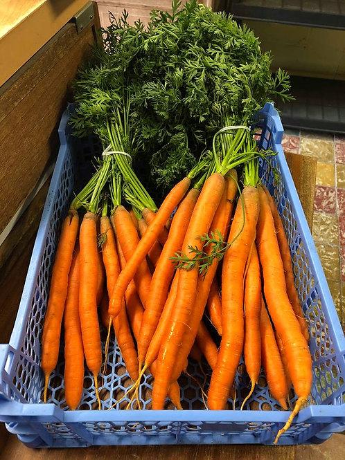 Jonge wortels