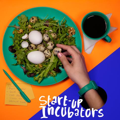 Cover Start-up incubators