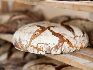 IS GLUTEN CAUSING YOU HARM?