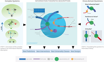Information Theory Infographic- Article Figure