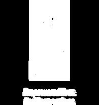 UNDP Logo White.png