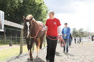 horse handler.jpg
