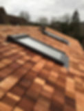 Roof Pic 11.jpg