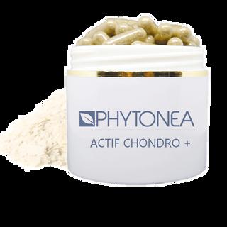 Actif Chondro +