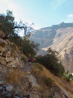 Peru's Colca Canyon Trek: Twice As Deep As The Grand Canyon