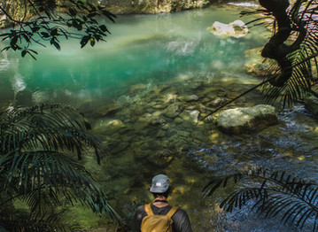 5 Tips on how to Travel to Japan's Most Remote Island: Iriomote