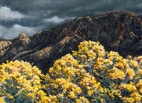 Gold Rush, No. 28 :: 101 Views of The Sandias