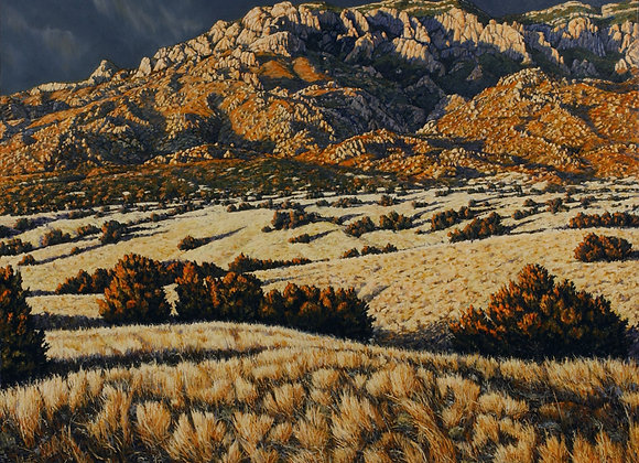 Coronado's Gold, No. 1 :: 101 Views of The Sandias