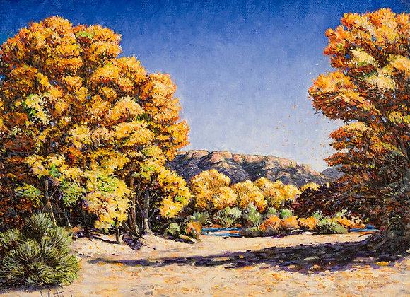 Autumn Sighting, No. 27 :: 101 Views of The Sandias