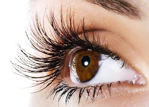 Category-Images-Eyelash-Emporium-Right.jpg