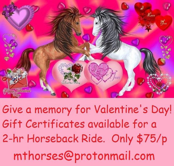 gift certifs for Valentine'sHelena w ema