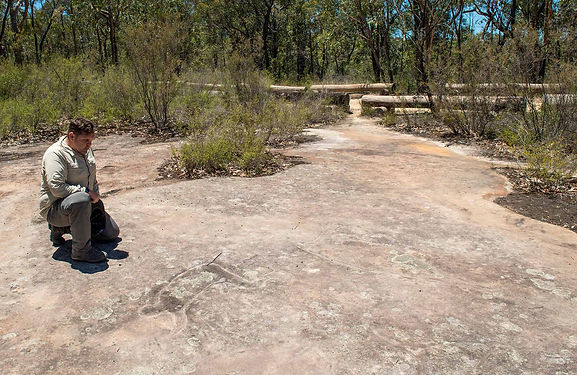 Indigenous Ranger with rock art.jpg