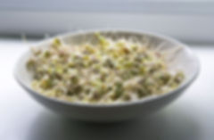 Bowl of Grains