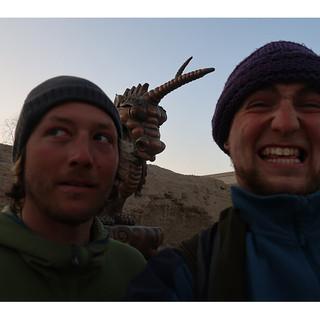 Selfie With a Horn's Horn