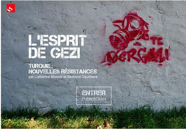 L'esprit de Gezi1.JPG