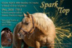 spark version 2.tif
