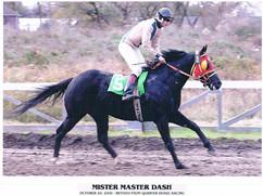 Mister master dash