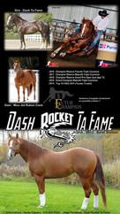 Dash Rocket Ta Fame
