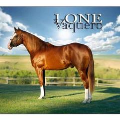 Lone Vaquero